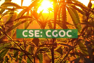 Cannabis Growth Opportunity Corporation Announces NAV of $3.41
