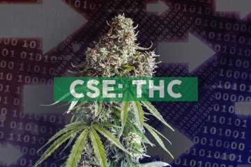 THC BioMed Announces Line of Credit