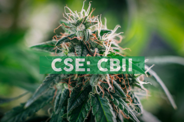 CB2 Insights Announces Annual General & Special Meeting of Shareholders and Corporate Update