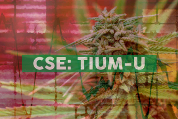 Cansortium Comments on New Texas Law Enabling Access to Low-Level THC Cannabis Products for Texans Coping with Certain Chronic Medical Conditions