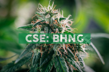 Bhang Retains Hybrid Financial and Boom Capital to Enhance Investor Relations and Capital Markets Exposure
