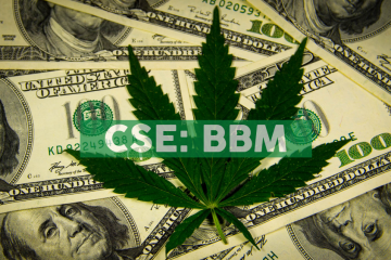 Blueberries Executes Definitive Agreement to Acquire Cannabis Cultivation, Processing & Manufacturing Rights for 3.2M Square Foot Property in Argentina