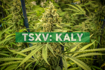Kalytera Announces Results of Shareholder Meeting Votes