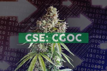 Cannabis Growth Opportunity Corporation Announces NAV of $2.96