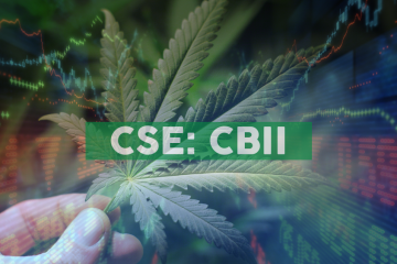 CB2 Insights Announces New Appointment to Board of Directors with Medical Cannabis and Capital Markets Executive
