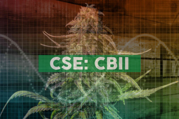 CB2 Insights Reports Second Quarter Fiscal 2019 Financial Results, Sees Positive Impact from New Acquisitions
