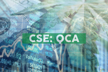 Quinsam Reports Q2/2019 Results, Provides Corporate Update, Renews Issuer Bid