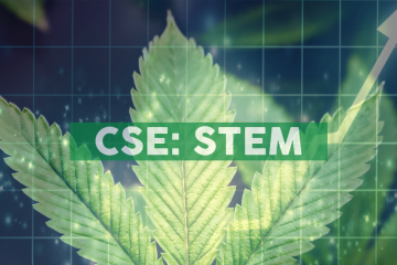 Stem Holdings Launches Medical Cannabis Division
