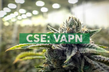 Vapen MJ Reports 43% Revenue Increase, 23% Increase in Net Income, for Second Quarter of 2019