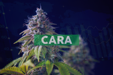 Cara Therapeutics to Present at the 2019 Cantor Fitzgerald Global Healthcare Conference