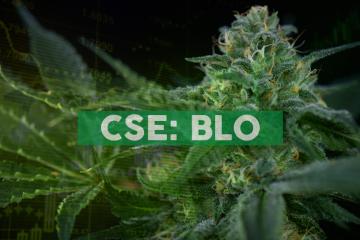 Cannabix Technologies Expands Marijuana Breathalyzer Portfolio with Licensing of UBC Technology for Workplace and Parental Use