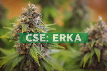 Eureka 93 Inc. Acquires a Health Canada License to Cultivate Cannabis in Ottawa and Begins Restructuring of Entire Senior Leadership Team