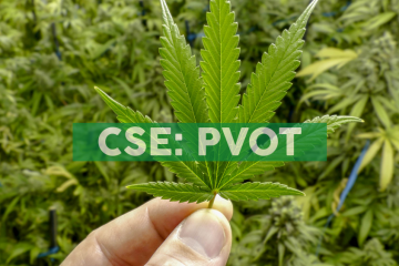 Pivot Pharma enters into binding Letter of Intent to acquire a controlling interest in iAmHealth CBD UG, an online nutraceutical sales platform serving Europe