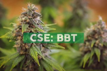 Benchmark Botanics Provides Progress Report on Peachland Cannabis Complex