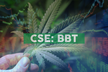 Benchmark Botanics and Vission Technology Enter a Letter of Intent for Cannabis Technology