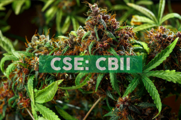 CB2 Insights Completes Acquisition of Cannabis Evaluation Clinics in Arizona and Colorado