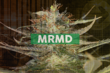 MariMed to Commence Cannabis Operations in Massachusetts