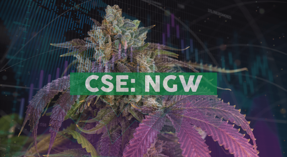Next Green Wave Holdings Inc. Announces CDN$6.3 Million in Financing's