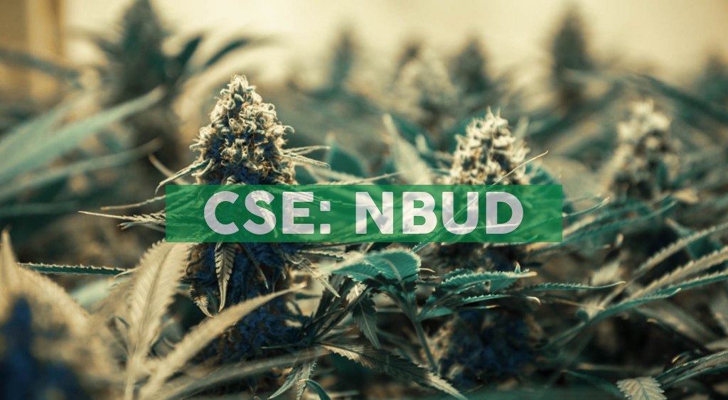 North Bud Farms Provides Corporate Update