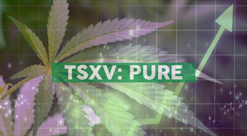 Pure Global launches e-store at PureSinse.com to begin serving cannabis patients from across Canada