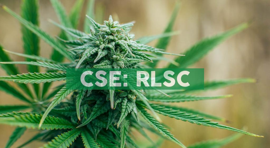 RISE Life Science Announces CBD Product Distribution Arrangement for Mexico
