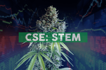 """Stem Holdings Facility Receives License to Operate """"TJ's on Powell"""", a Portland Dispensary"""