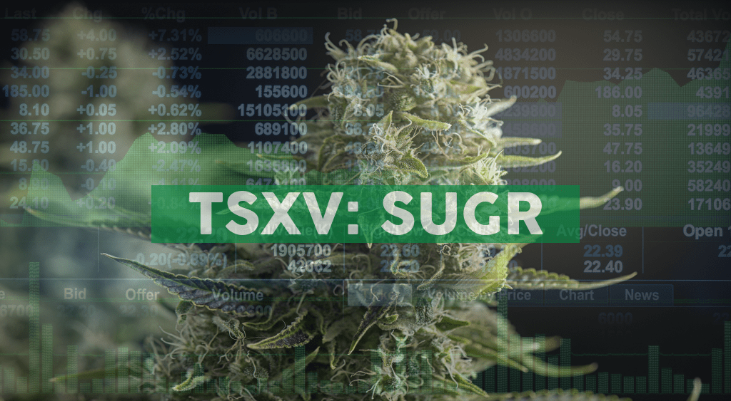SugarBud announces strategic relationship with Phylos Bioscience Inc. regarding the characterization and analysis of SugarBud's Genetic Library