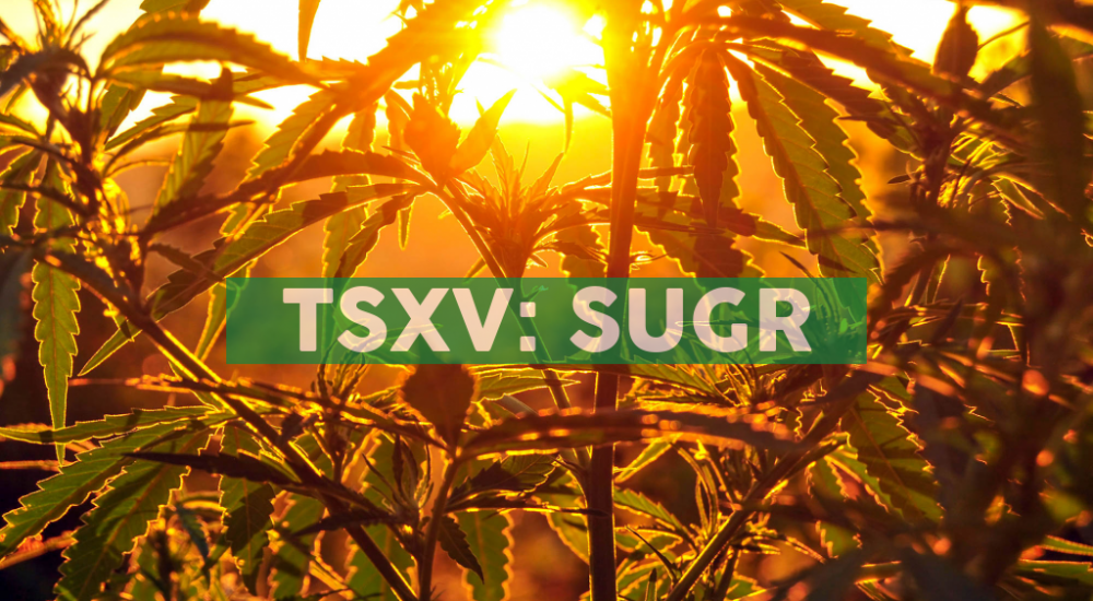 Sugarbud Announces Closing of Private Placement