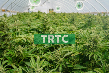 Terra Tech Corp. Schedules First Quarter 2019 Earnings Release for Thursday, May 9, 2019