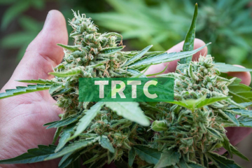 Terra Tech Launches Legal Cannabis Delivery Service in Orange County, CA