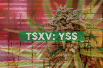 YSS Corp. Announces TMX Market Open Event and Operational Update