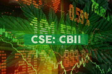 CB2 Insights Announces Record Revenue of $4.2 million for the Third Quarter 2019; Sequential Growth of 29%