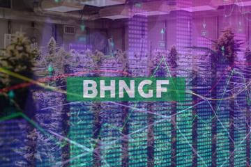 Bhang Inc. Announces Senior Management Changes