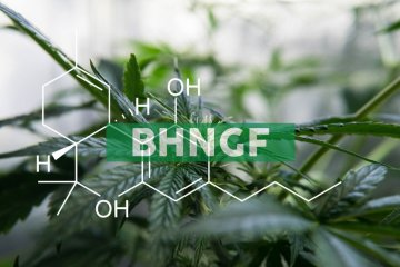 """Bhang Inc. Graduates to the OTCQX Best Market in U.S. and Announces OTC Ticker Symbol Change to """"BHNGF"""""""