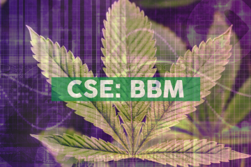 Blueberries Medical to Acquire Cannabis Cultivation, Processing & Manufacturing Rights for 3.2 Million Square Foot Property in Argentina