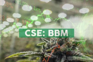 Blueberries Medical Commences Trading in the United States on OTCQB Market Under Symbol BBRRF
