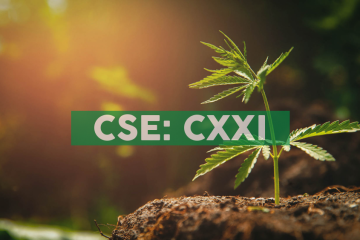 C21 Investments' CEO to address Annual Cannabis Conference in New York