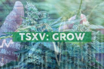 CO2 GRO Inc.'s SCSU Plant Research Partner Granted a Minnesota Hemp Research License