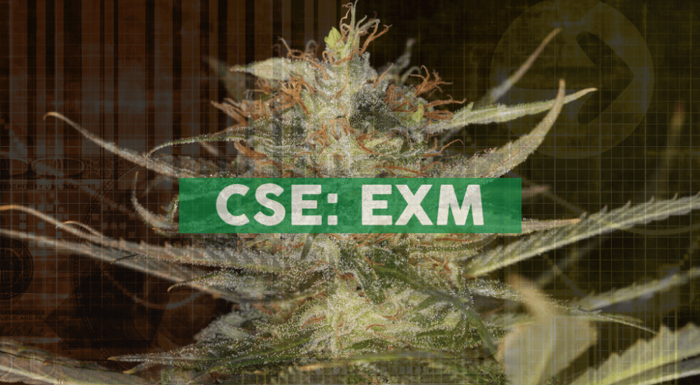 EXMceuticals Inc. announces appointment of new CEO