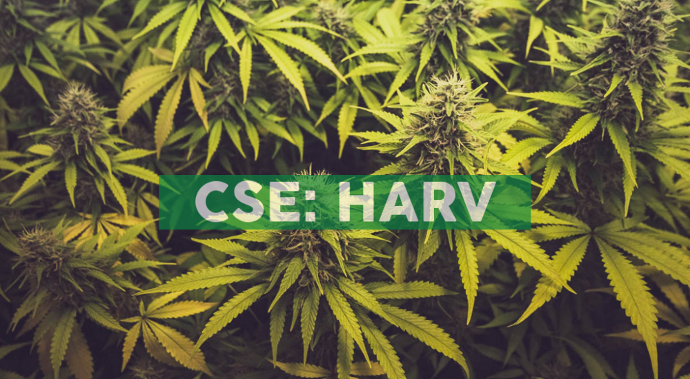 Fifth Harvest-Affiliated Pennsylvania Dispensary Opens in Harrisburg