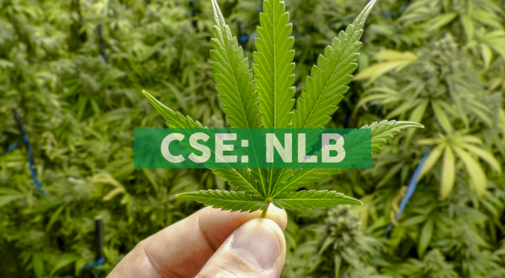 NewLeaf Brands Signs Letter of Intent to Purchase Arizona Based CBD Conglomerate  Vida Concepts, LLC.