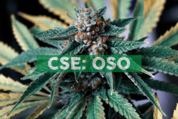 Osoyoos Cannabis Announces Non-Binding Letter of Intent to Continue as Anahit International Following Reverse Take Over