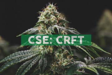 Pasha Brands Unveils its Revolutionary Digital Platform, Craft Labs™, to Help Connect Micro-Cultivators and Analytical Labs