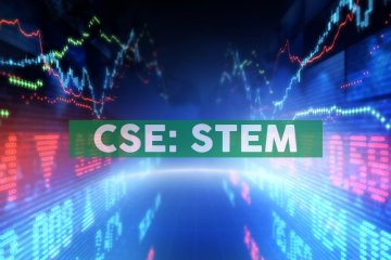 Stem Holdings, Inc. Enters the Global Cannabis & Industrial Hemp Market with acquisition of South African Ventures, Inc.