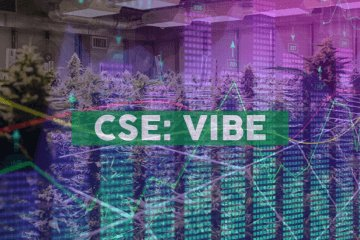 Vibe Bioscience Ltd. Announces Appointment of New CFO