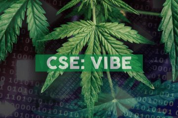 Vibe Reports Expansion of its Cultivation Operations and the Third Quarter 2019 Financial and Operational Results