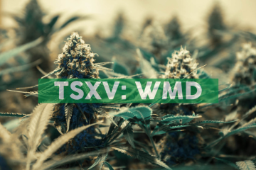 WeedMD Provides Corporate Update and Schedules Q3 2019 Earnings Call for November 29th