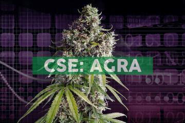 AgraFlora Organics To Develop Terpene-Infused Over-the-Counter CBD Alternative at New Brunswick Cannabis Campus