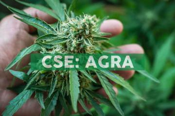 AgraFlora Organics Completes UK Home Office Controlled Drug Handling License Inspection