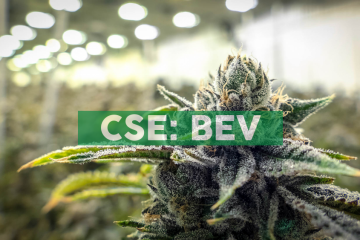 BevCanna: Infused Beverage Experts, CEO Clip Video